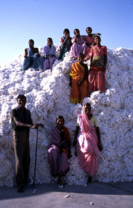Organic Cotton farmers before ginning